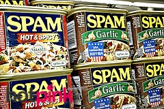 Funny Internet Spam for eMail and Websites is ...