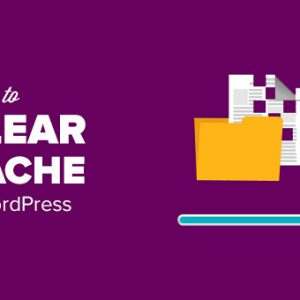 How to Clear Your Cache in WordPress (Step by Step)